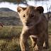 Újabb előzetest kaptunk Az oroszlánkirályhoz - Végre itt van Timon és Pumba is
