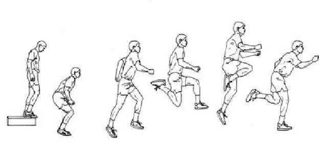 box drills dengan front box jump