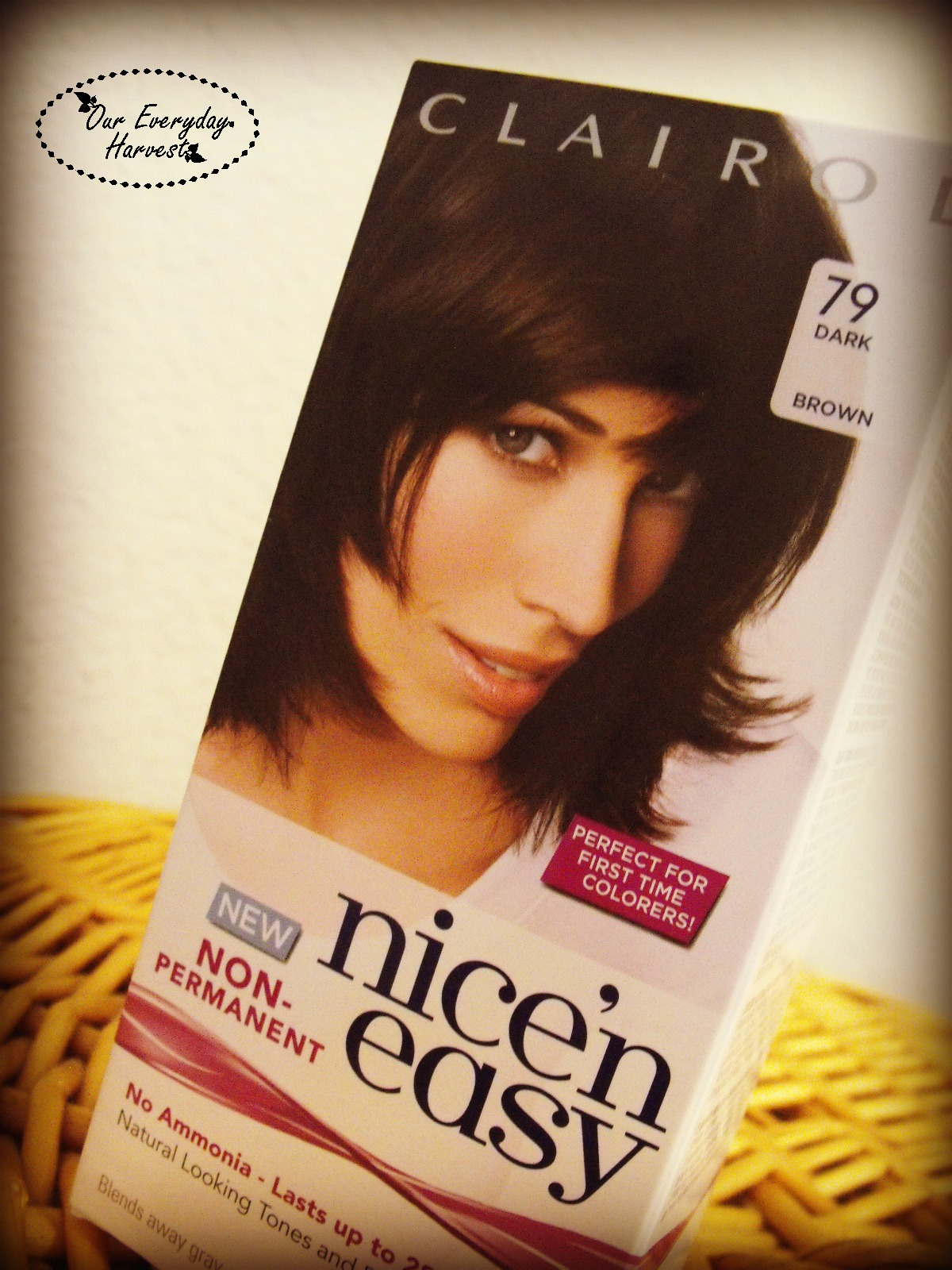 Clairol Nice N Easy Non Permanent Hair Color Review Our