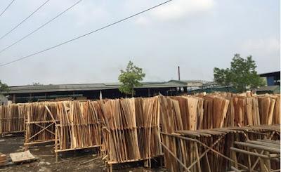 go-veneer-plywood