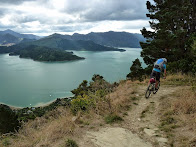 Queen Charlotte Track - Picton, NZ