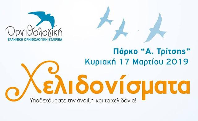 """Ελληνική Ορνιθολογική Εταιρεία: Χελιδονίσματα"""" στο Πάρκο """"Α. Τρίτσης"""""""