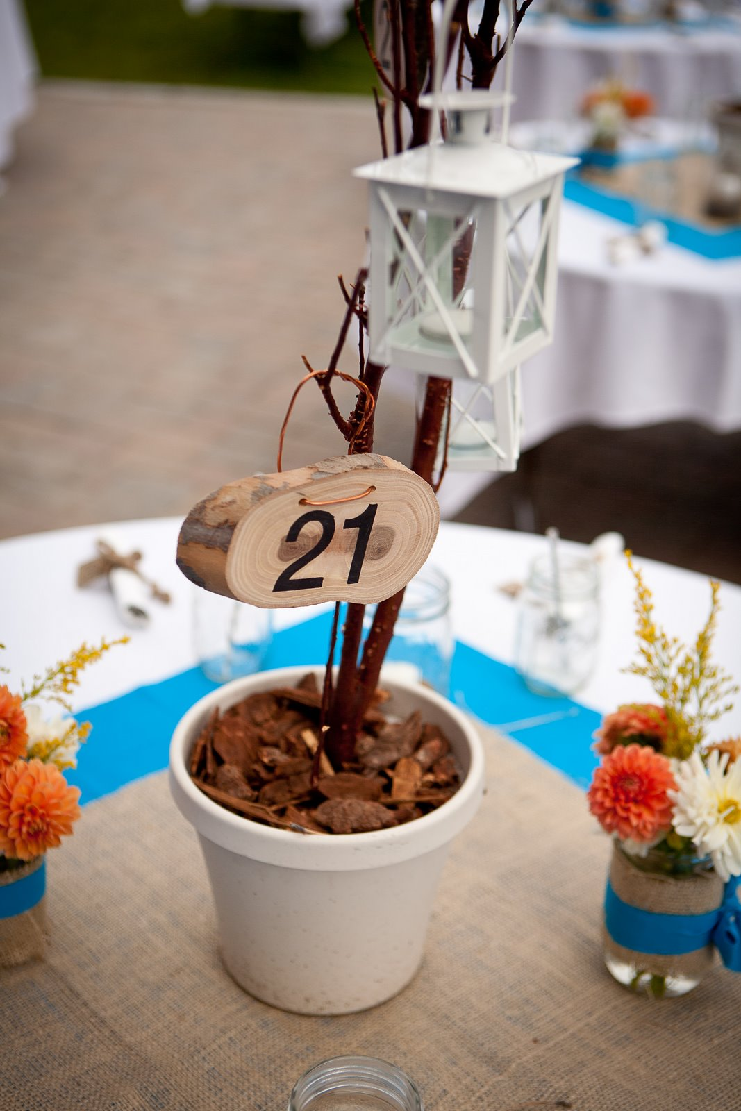 a.cup.o.joe.c: DIY Manzanita Centerpieces and Wood Table ...