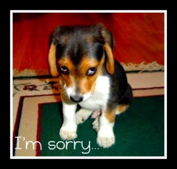 "Pulpitandgavel: ""I'm Sorry"". Really?"