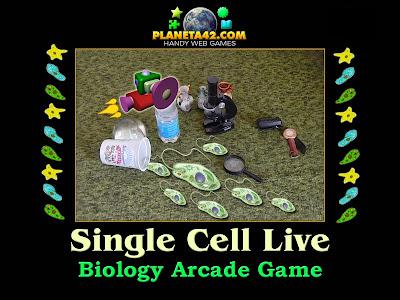 Едноклетъчни Организми