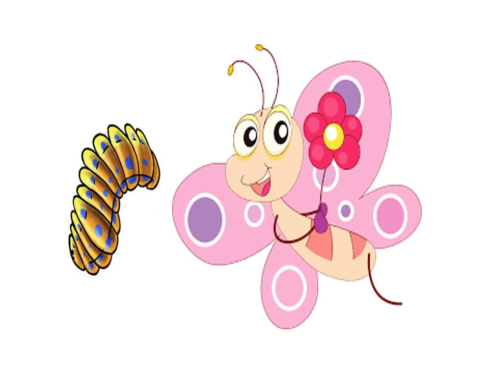 Stories for Kids - A Butterfly & its Cocoon