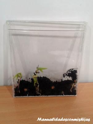 Plantar semillas en Cds