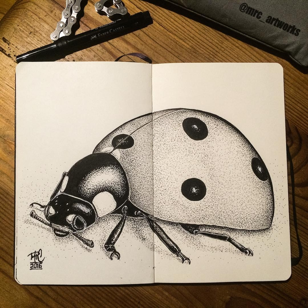07-Ladybug-mrc_artworks-Sketching-Inspirations-on-a-Moleskine-Notebook-www-designstack-co