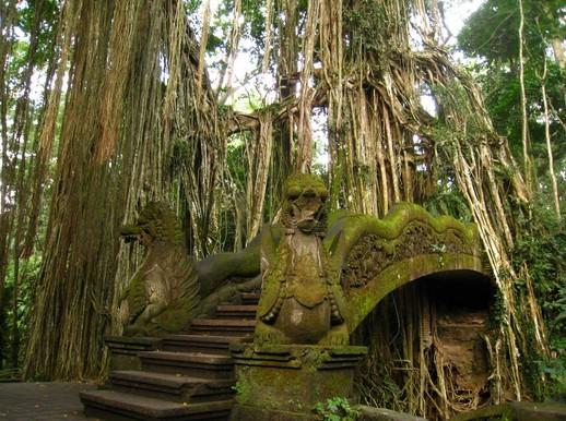Pesona Keindahan Wisata Monkey Forest Di Ubud Gianyar Bali