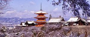 Paket Tour Jepang Tokyo Osaka Hamamatsu 2013