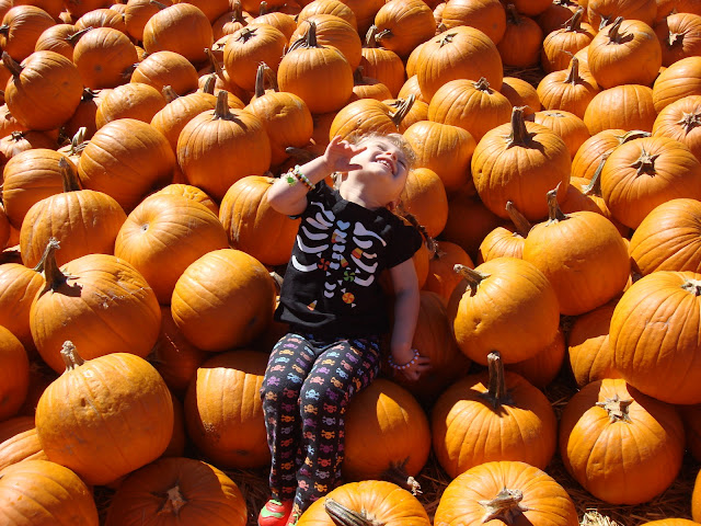 Bates Nut Farm Pumpkin Patch 2011 Halloween Fall BeckyCharms