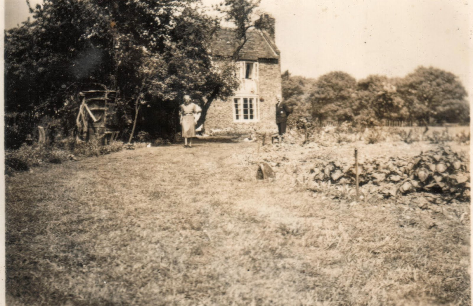 Country garden in the making 1940s Britain