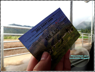 New Zealand Malaysia :  Desa Dairy Farm, Mesilau Sabah