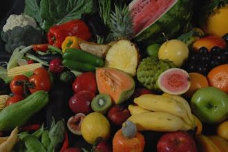 Ceasa Campinas realiza 1º Workshop de Exportação de Hortifrútis