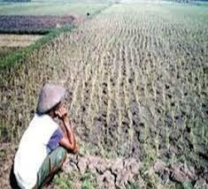 Pengaruh Kelembapan dalam Bidang Pertanian