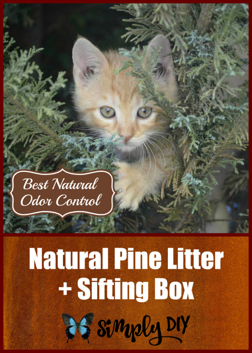 Feline Pine Cat Litter System