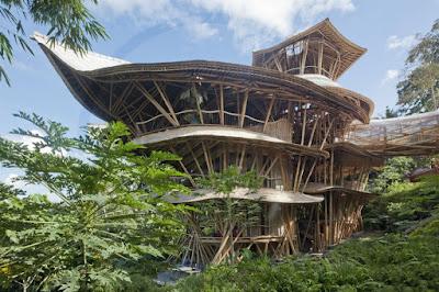 hotel casa de arbol
