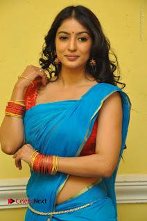Telugu Actress Vaibhavi Stills in Blue Saree at Www.Meena Bazaar Movie Opening  0045.JPG