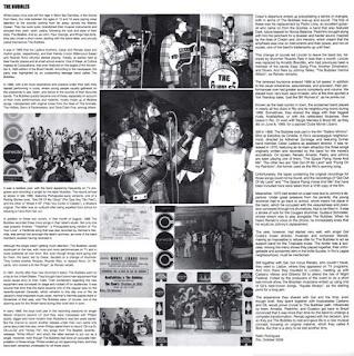 """""""A Bolha"""" foi uma banda de rock brasileira formada em 1965 no Rio de Janeiro, com o nome """"The Bubbles"""". Participou ativamente do circuito de bailes, programas de rádio e de tv que existiam na capital carioca naquela época. No início tocavam apenas covers ou versões de canções e bandas de sucesso da Europa e dos Estados Unidos, mas, no início dos anos 70, passaram a compor suas próprias canções e chegaram a gravar dois álbuns, o primeiro em 1973, chamado """"Um Passo à Frente"""" e o segundo em 1977, chamado """"É Proibido Fumar"""". Encerraram as atividades em 1978, mas voltaram a ativa em 2004, chegando a gravar um novo álbum em 2006, chamado """"É Só Curtir"""", para então pararem novamente. Foram importantes no cenário musical brasileiro por tocarem como banda de apoio para """"Gal Costa"""", """"Leno"""", """"Márcio Greyck"""", """"Raul Seixas"""" e 'Erasmo Carlos"""", além disso, seus integrantes deram origem ou integraram várias bandas que fariam sucesso na década de 1970 e na década seguinte como """"Bixo da Seda"""", """"Herva Doce"""", """"A Cor do Som"""", """"Roupa Nova"""" e """"Hanói-Hanói"""". """"A Bolha"""" foi criada em 1965 pelos irmãos """"César Ladeira"""" e """"Renato Ladeira"""", filhos da atriz argentina """"Renata Fronzi"""" e do radialista paulista """"César Ladeira"""", que tocavam guitarra solo e ritmo, respectivamente, juntamente com """"Ricardo"""" no baixo e """"Ricardo Reis"""" na bateria. A participação de """"Ricardo"""" no baixo durou apenas algumas semanas devido a diferenças de visão sobre a banda. """"Lincoln Bittencourt"""" foi recrutado para o baixo e, com essa formação, são convidados pela gravadora Musidisc a registrar um compacto simples com duas versões de músicas de sucesso: """"Não Vou Cortar o Cabelo"""", versão de """"Break It All"""" da banda uruguaia """"Los Shakers"""", no lado A e """"Por Que Sou Tão Feio"""", versão do hit """"Get Off Of My Cloud"""" dos """"Rolling Stones"""", no lado B. O convite se deu nos bastidores da gravação de um programa de tv e o compacto que se seguiu não fez muito sucesso devido a falta de divulgação por parte da gravadora e da banda. Em 1968, fora"""