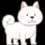 柴犬のイラスト(白)