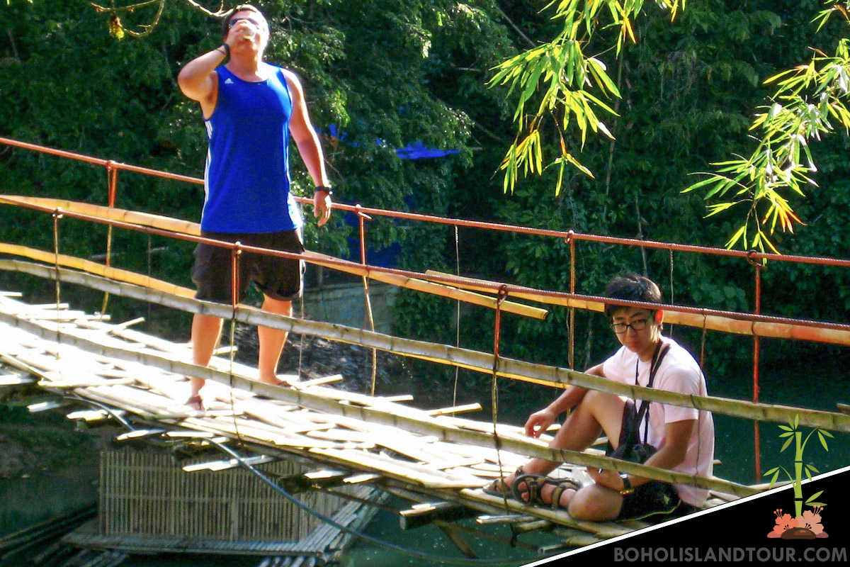 Bamboo Bridge Bohol