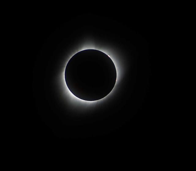 Sun corona visible during August 21 total eclipse, 300 mm, 1/30 sec (Source: Palmia Observatory)