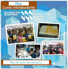 Plan de Curso Introductorio 2019-1