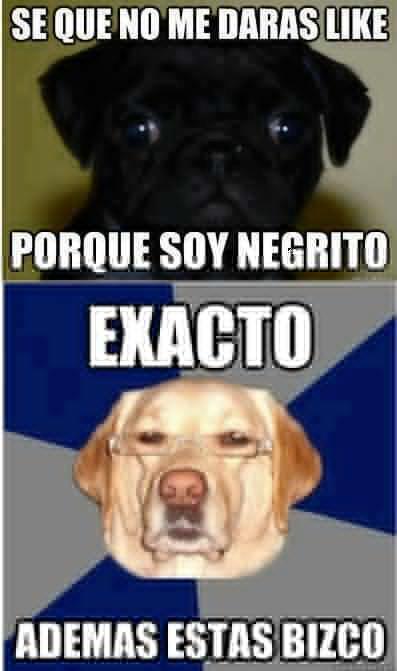 perro-racista