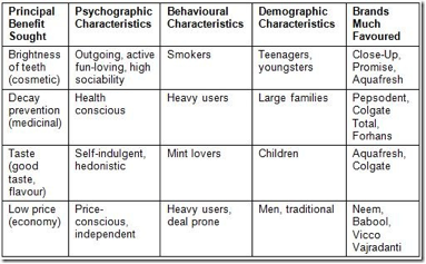 How the demographic and psychographic segmentation work marketing essay