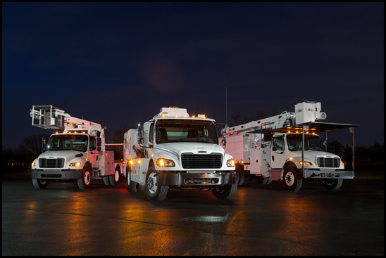 Lineup of Freightliner Trucks
