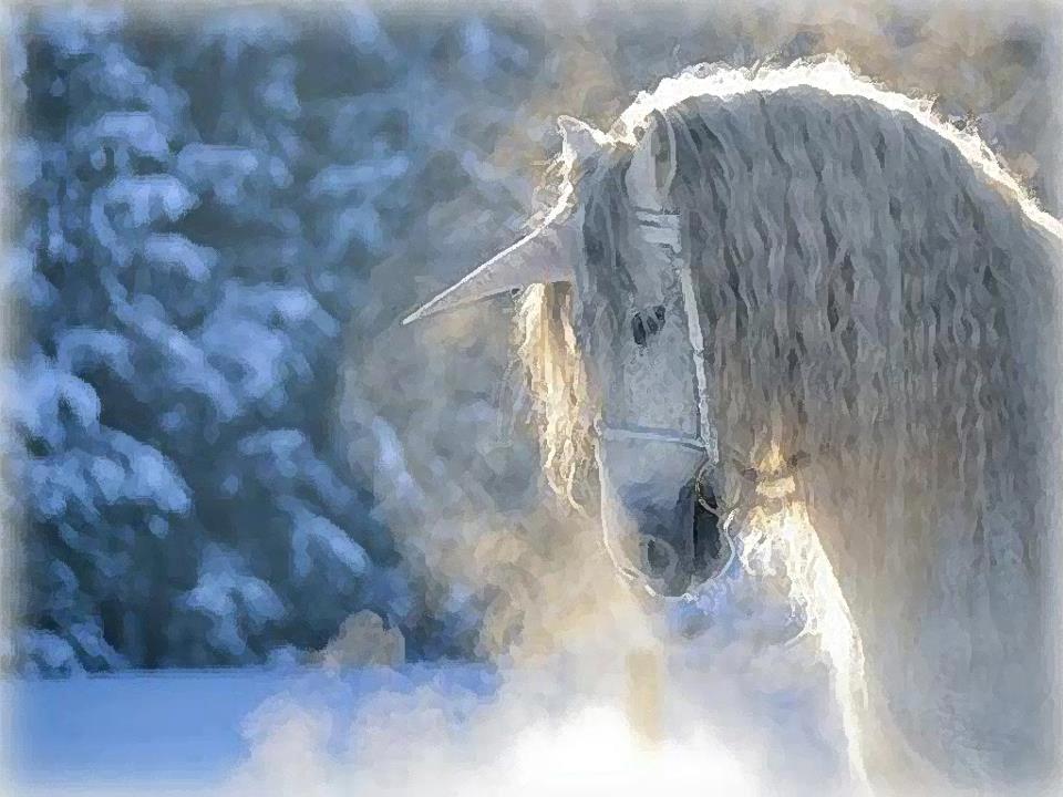 Caballo unicornio blanco