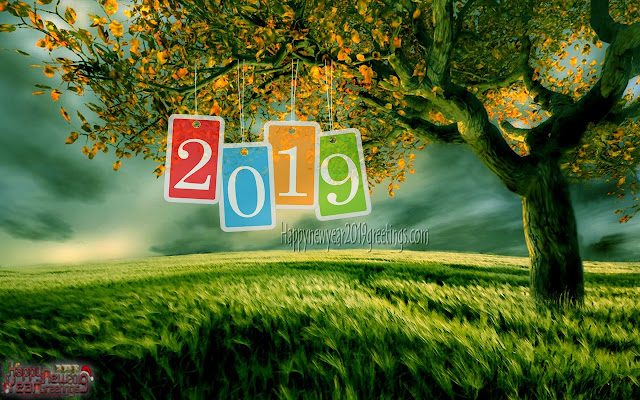 Happy New Year 2019 Nature Pictures Download For desktop