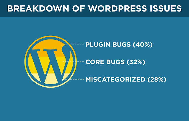 Percentage breakdown of WordPress Issues
