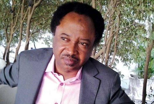 You Are Responsible for Nigeria's Economic Woes; Shehu Sani tells Ex-CBN Governor Soludo