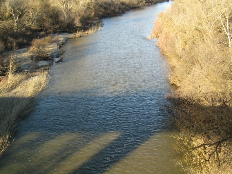 Salinas River Photos from Vineyard Bridge in Templeton