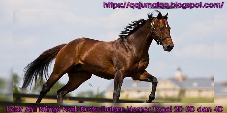 Tafsir Arti Mimpi Naik Kuda Dalam Nomor Togel D D Dan D