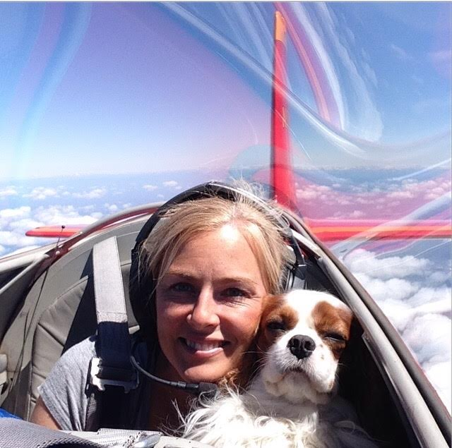 Cavalier King Charles Spaniel in red, RV8 plane