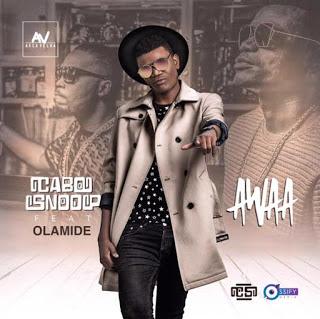 Zkappa & Cabo Snoop feat. Olamide - Awaa (Remix)