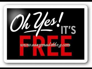 Free custom domain names