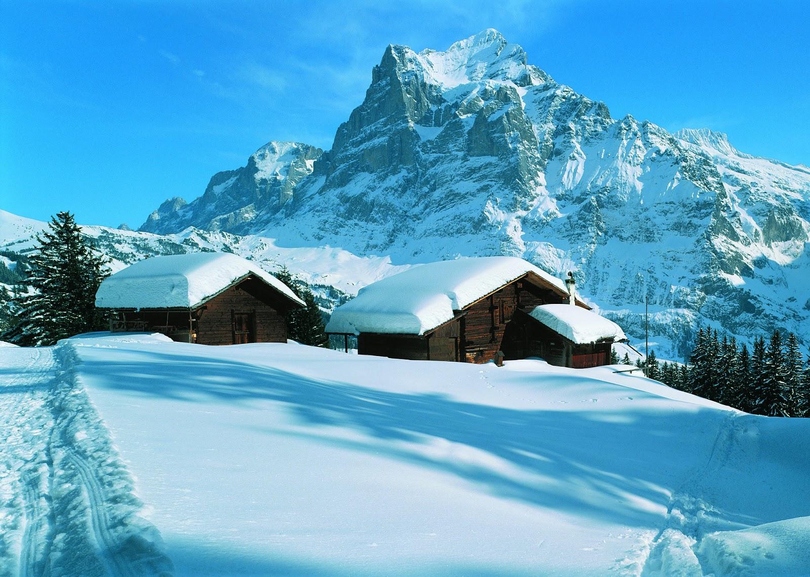 #Alpes, Geologia, Relevo, Clima e Vegetação das Regiões Alpinas