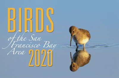 Bords of the San Francisco Bay Area 2020 Calendar - cover showing a shorebird