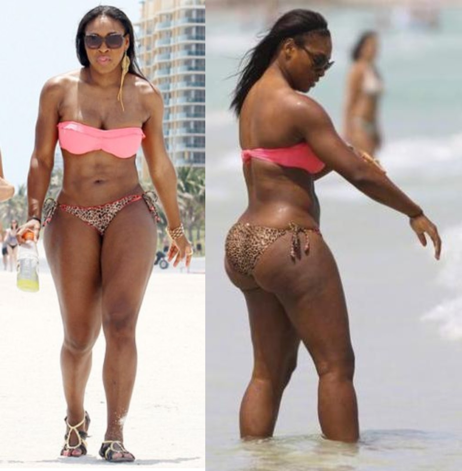 Serena Williams Photos Bikini