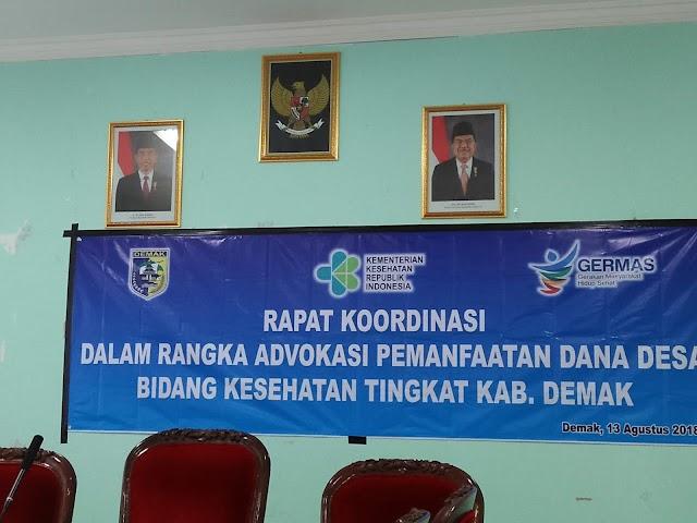 Advokasi Dana Desa Untuk Kesehatan