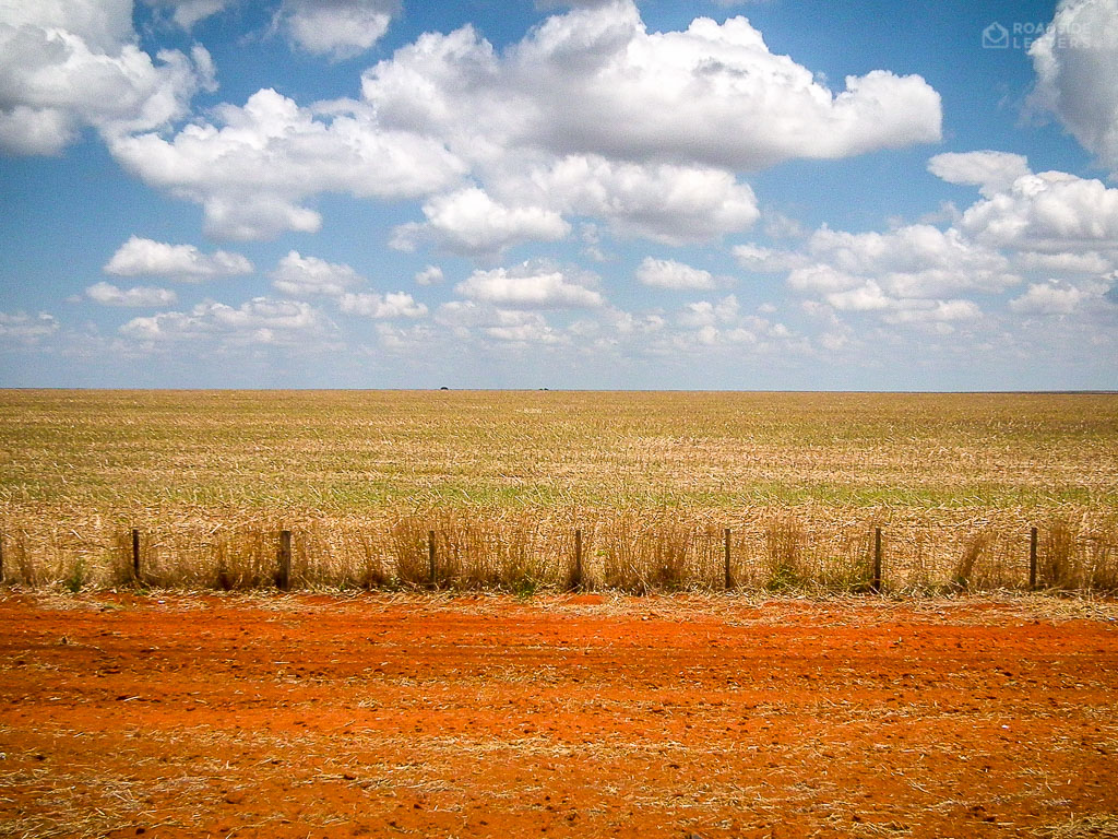 Soy monoculture in central Brazil
