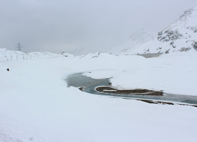 Lago Negro. Bernina Express