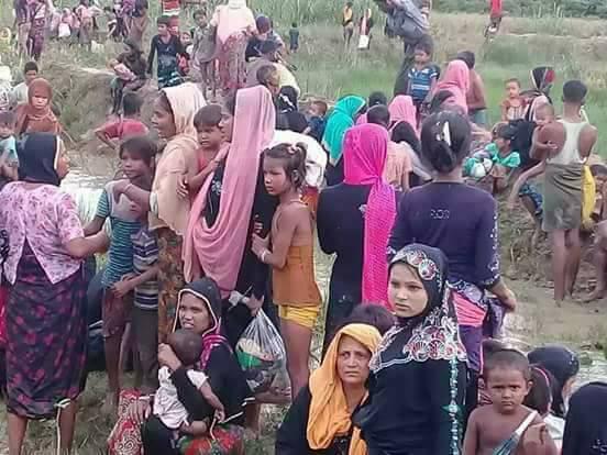 Myanmar Lanjutkan Operasi Pembersihan Rohingya