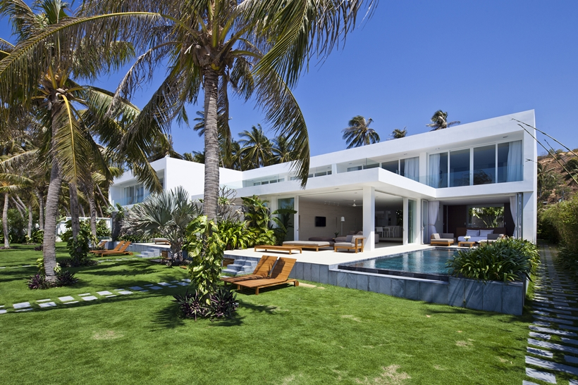 Modern terrace surrounded with palm trees