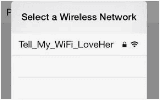 tell my wifi love her images