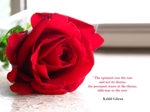 Red Rose Poems And Quotes. QuotesGram