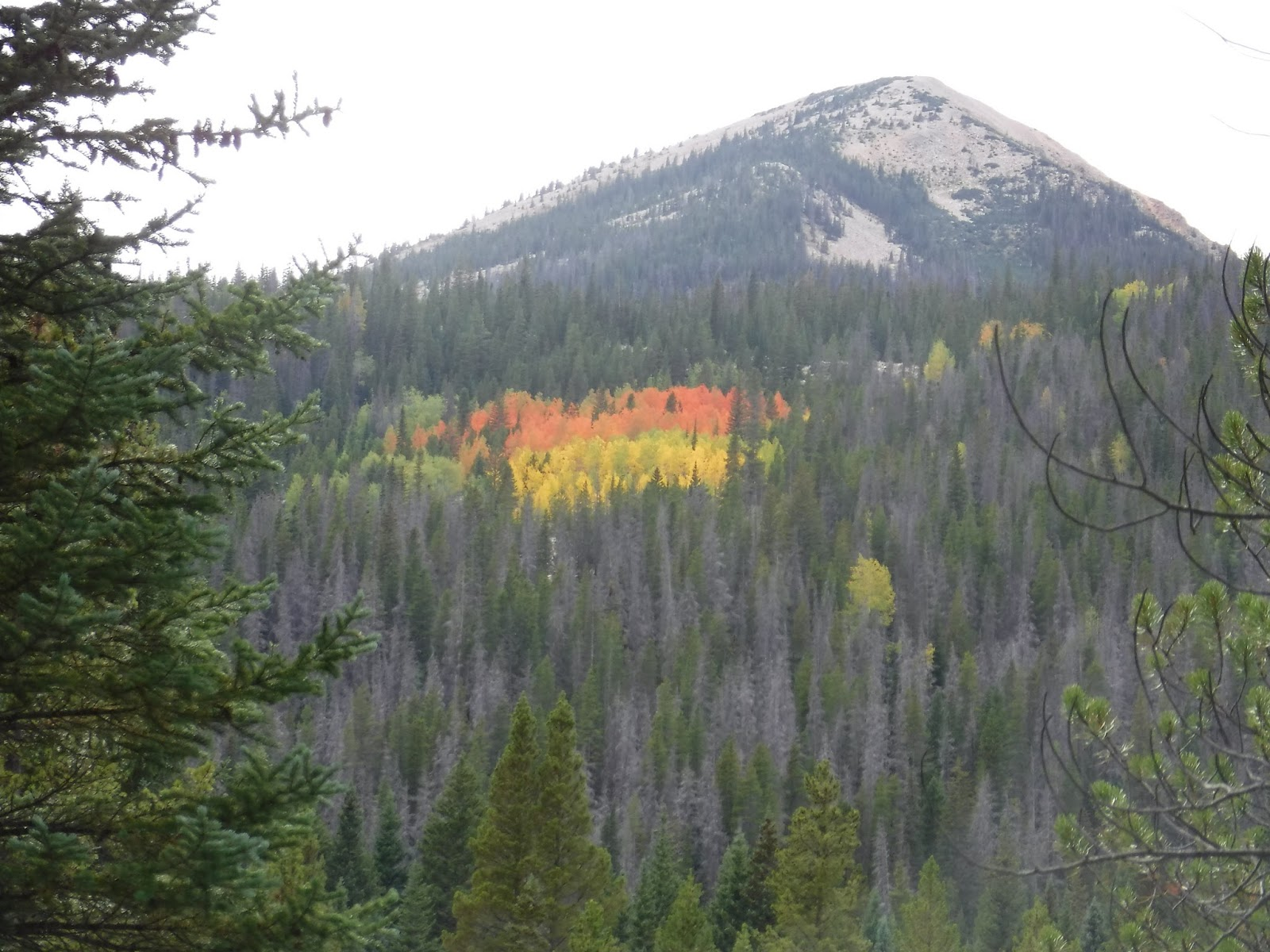 this will probably be our last blog from rocky mountain national park we have one more day but expect to be pretty tired after 16 miles